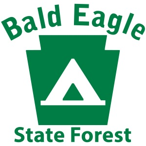 Bald Eagle State Forest Camping Keystone PA