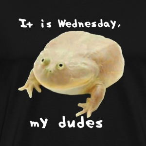 It is wednesday my dudes OG - Men's Premium T-Shirt
