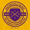 Historically Black T-Shirts - Men's Premium T-Shirt