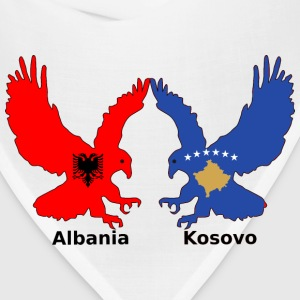Albania and Kosovo, two eagles - Bandana