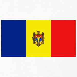 Moldova Flag T-Shirt - Men's Premium Long Sleeve T-Shirt