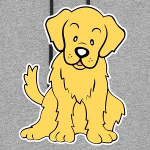 Golden Retriever Shirt - Colorblock Hoodie