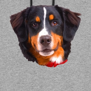 Bernese Mountain Dog Shirt - Colorblock Hoodie