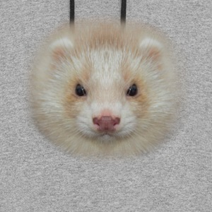Ferret Face T Shirt - Colorblock Hoodie