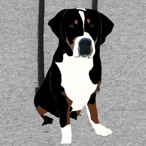 Greater Swiss Mountain Dog Art - Colorblock Hoodie