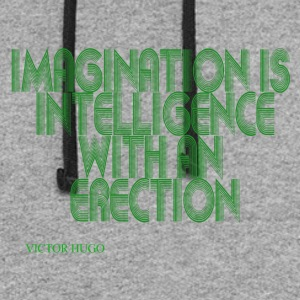 Intelligence with an erection - Colorblock Hoodie