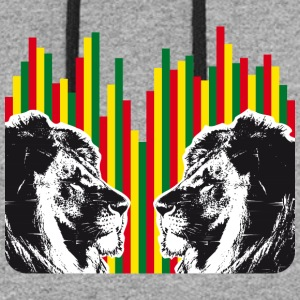 Reggae lions, lions of judah - Colorblock Hoodie