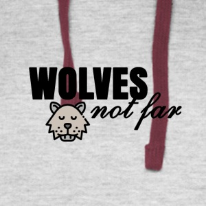 Wolves not far - Colorblock Hoodie