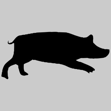 Line art black and white sitting pig side view Clip Art   k57824418    Fotosearch