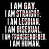 I AM GAY. I AM STRAIGHT. I AM LESBIAN, I AM HUMAN - Men's Hoodie