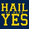 Hail Yes GO BLUE - Men's Hoodie