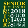 Senior Class Of 2018 - Men's Hoodie