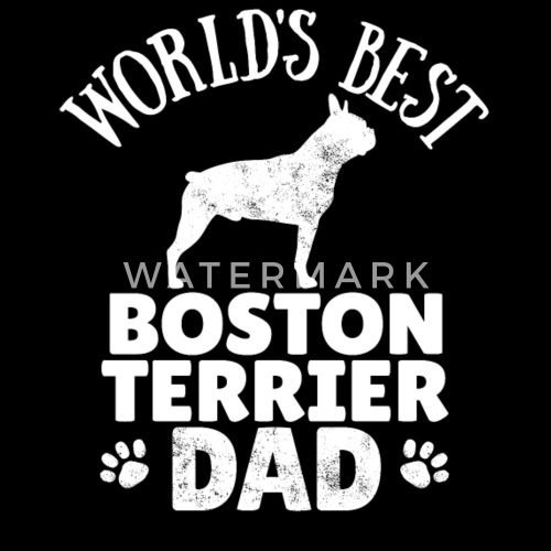 d8ef98ca Boston Terrier Dog Dad Boston Bull Dog Gift Idea - Women's Vintage Sport T-Shirt.  Back. Back. Design