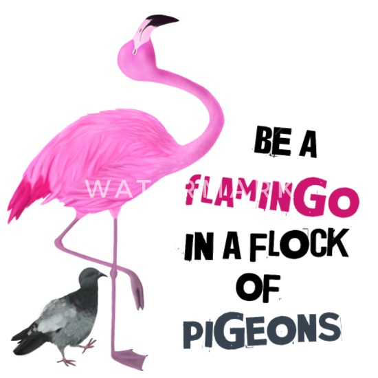 Be A Flamingo In A Flock Of Pigeons Chefs Apron Funny Cooking