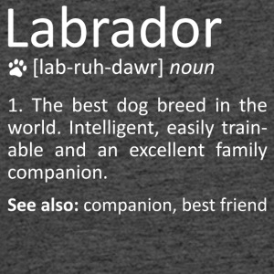 Labrador Definition Awesome Dog Breed Meaning Gift - Men's 50/50 T-Shirt