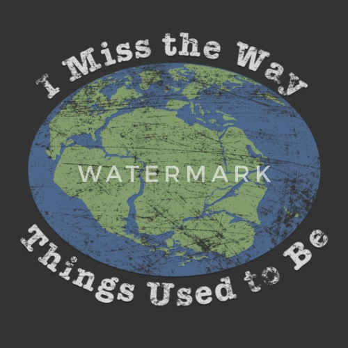 I Miss The Way Things Used To Be Mens Jersey T Shirt Spreadshirt