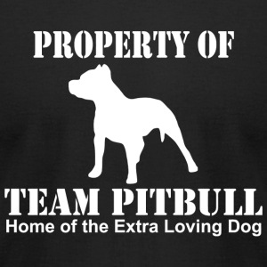 Pitbull - property of team pitbull home of the e - Men's T-Shirt by American Apparel