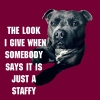 Watching Staffy - Men's T-Shirt