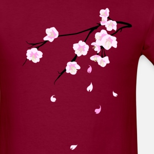 Cherry blossoms (Sakura)