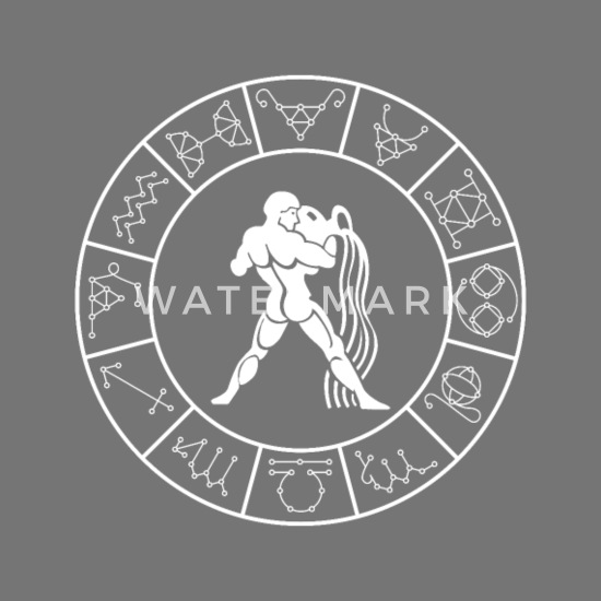 Aquarius T Shirt Zodiac Signs January February Men's T-Shirt