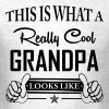 This Is What A Really Cool Grandpa Looks Like - Men's T-Shirt