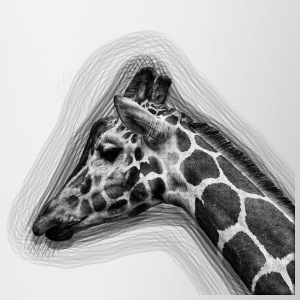 Giraffe Drawing - Contrast Coffee Mug