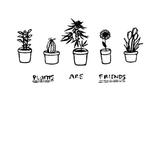 50ee58848 PLANTS ARE FRIENDS weed tee unisex womens mens cut Women's T-Shirt ...