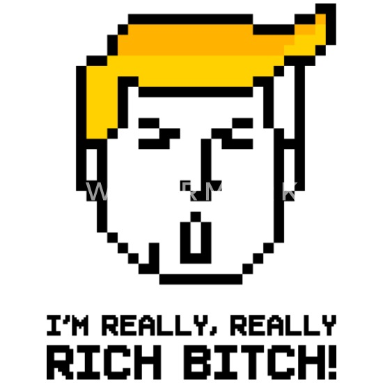 trump-pixel-head-im-really-really-rich-bitch-womens-t-shirt.jpg