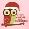 Owl Be Home For Christmas - Women's T-Shirt