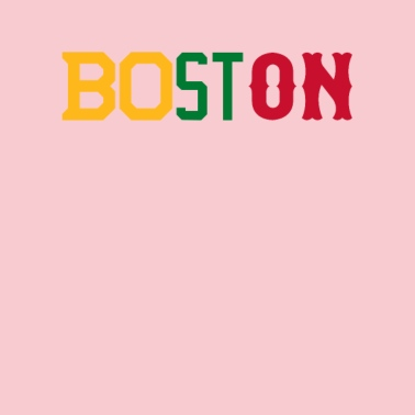 Boston City Women's Premium Hoodie - heather gray
