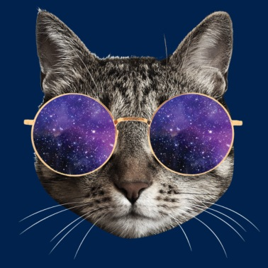 fef49b7a4a95b Cat sly nerd kitty glasses gift Women s Rolled Sleeve T-Shirt ...