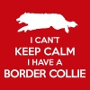 Can't Keep Calm Border Collie - Women's V-Neck T-Shirt