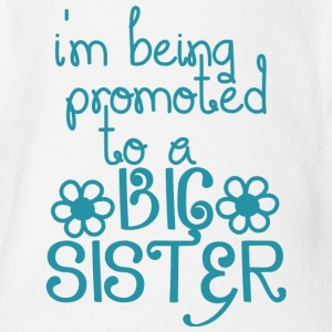 I've Been Promoted Tp A Big Sister