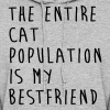 The Entire Cat Population Is My Bestfriend - Women's Hoodie