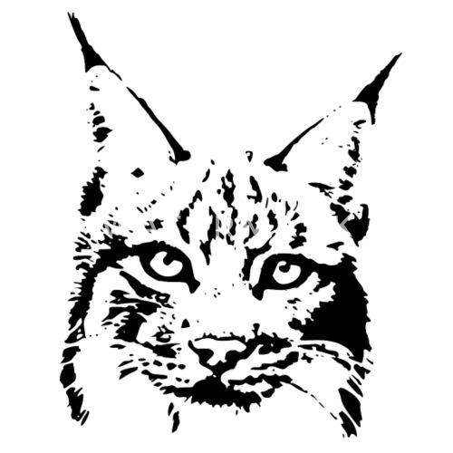 Melroe Bobcat