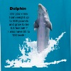 Dolphin Facts - Kids' T-Shirt