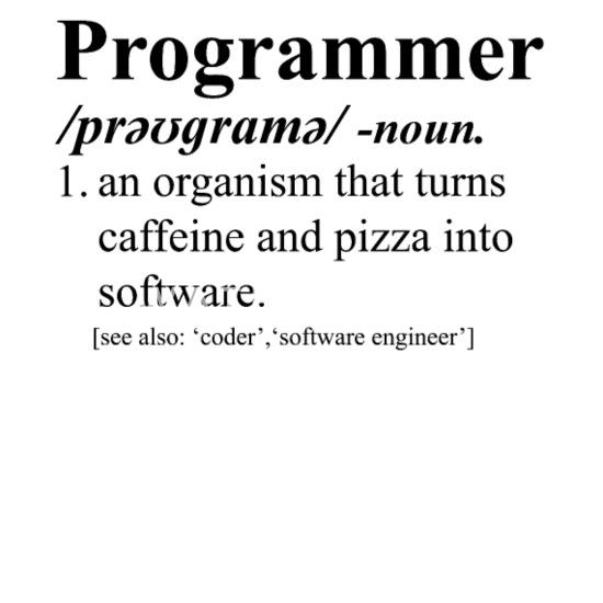 Programmer funny dictionary definition Bandana - white