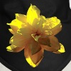 Closeup of Yellow Daffodil - Dog Bandana
