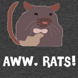Aww, Rats! - Men's V-Neck T-Shirt by Canvas