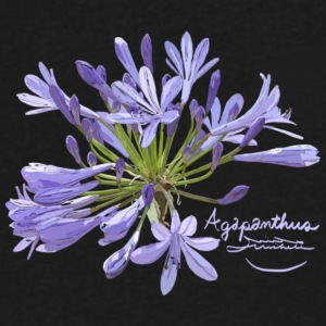 Agapanthus - Men's V-Neck T-Shirt by Canvas