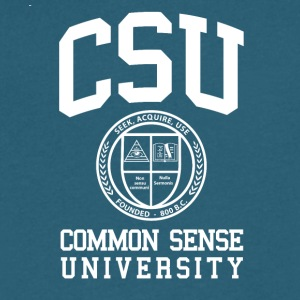 Common Sense Black T-Shirts - Men's V-Neck T-Shirt by Canvas