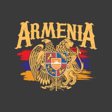 Distressed Armenia Flag Armenian Diaspora Country Nation T-Shirt