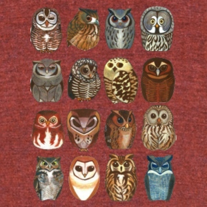 16 Random Owls - Unisex Tri-Blend T-Shirt by American Apparel