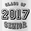 Class of 2017 - Water Bottle