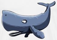Width of a sperm whale