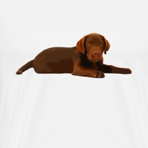 Chocolate Labrador Shirt - Men's Premium T-Shirt