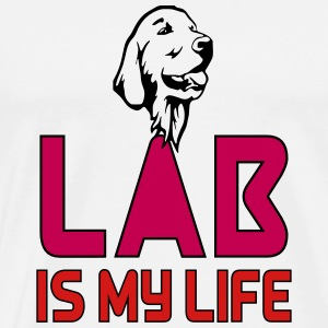 LAB IS MY LIFE Special Labrador T Shirts - Men's Premium T-Shirt