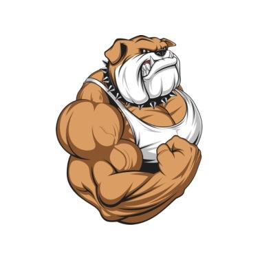 Angry Bear Men's 50/50 T-Shirt | Spreadshirt