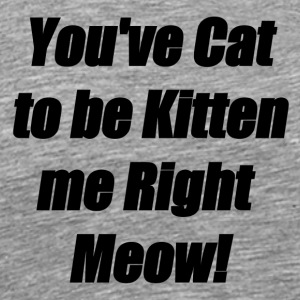You've Cat to be Kitten me Right Meow! - Men's Premium T-Shirt