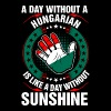 A Day Without A Hungarian Sunshine - Men's Premium T-Shirt